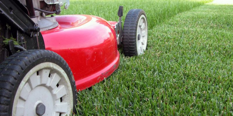 How to Price Lawn Care Mowing Job?