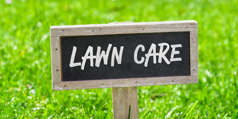 Lawn Care Marketing Strategies Business Grow