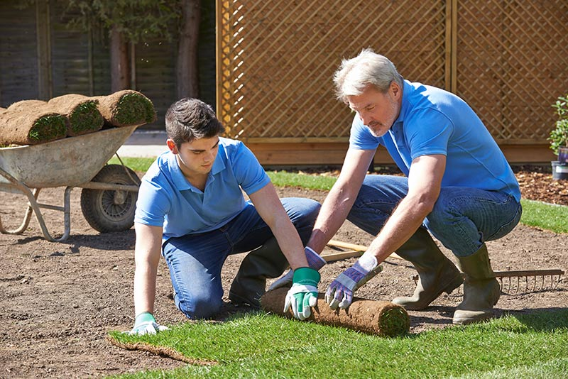 Landscaping Business - Photo 1